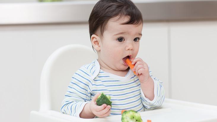 Como dar novos alimentos para o bebê | Pikuruxo
