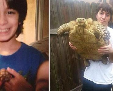 animais-antes-depois-20 recriações de fotos com animais. Imperdível! Pikuruxo-animais-antes-depois-animais-antes-depois