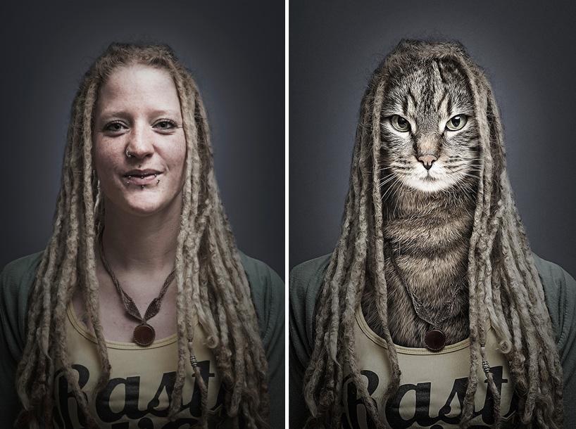 gatos- animais vestidos como os donos