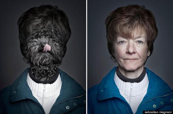 cachorros- animais vestidos como os donos