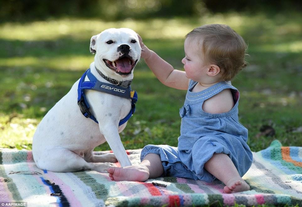 bebê sem braços e seu cãozinho de três pernas