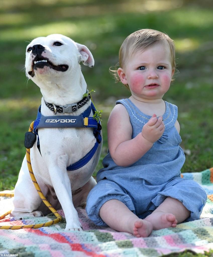 bebê sem braços e cachorro sem uma pata