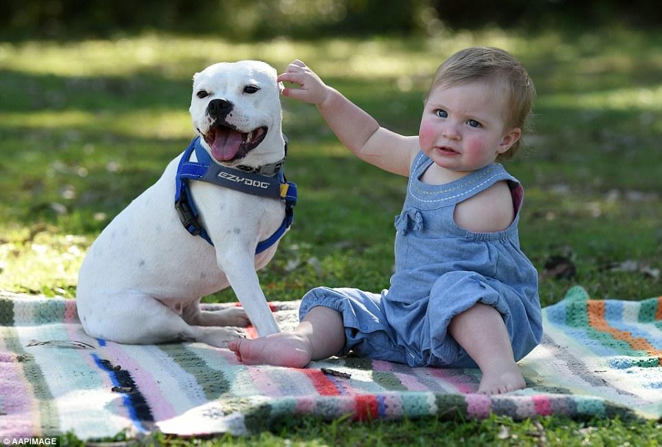 nenêm sem um braço e seu cãozinho de três pernas