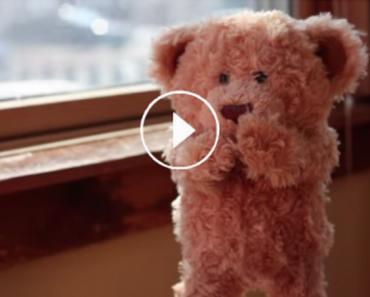 Esse ursinho conhece seu melhor amigo, um bebê! Muito fofo!