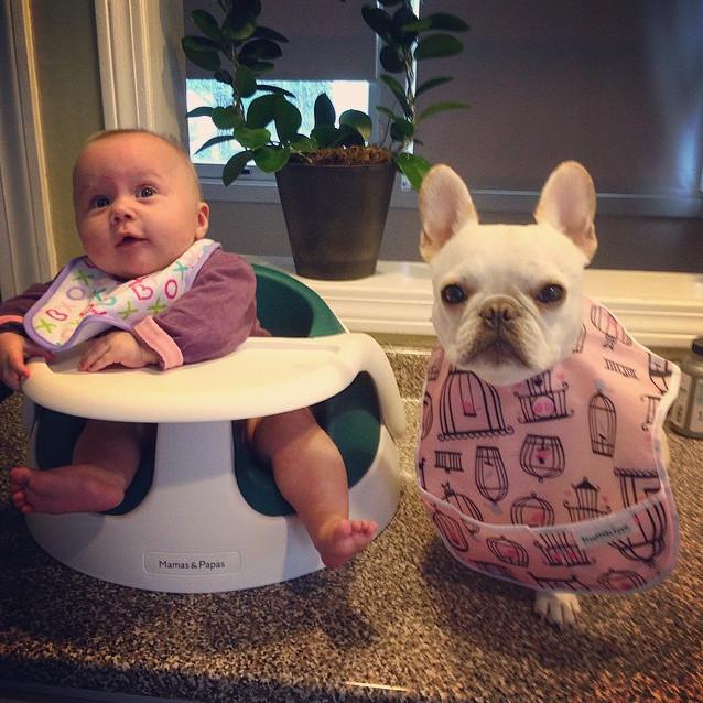 bebê e seu cachorro